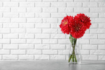 Wall Murals Dahlia Beautiful dahlia flowers in glass vase on table against brick wall. Space for text