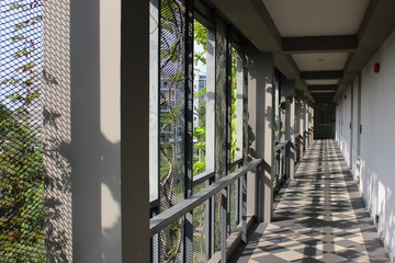 Long building corridor lit by sunshine and shadow through gaps in the exterior facade which also support climbing plants.