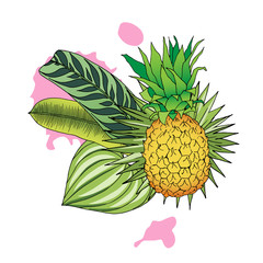 Vector color illustration of pineapple and tropical leaves on white background. Isolated composition of exotic fruit ananas and greenery for design. Bright design element for label, menu, advertising