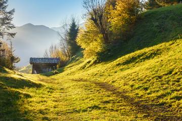 Feldweg zu einer  Almhütte in Tirol