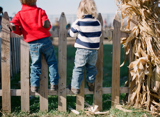 two little boys stand on a picket fence in the countryside in the fall
