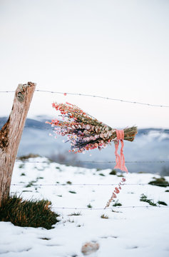 bouquet of wild flowers hooked on a barbed wire in a rural winter enviroment