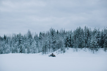 Snowmobile in snowy landscape with fir forest