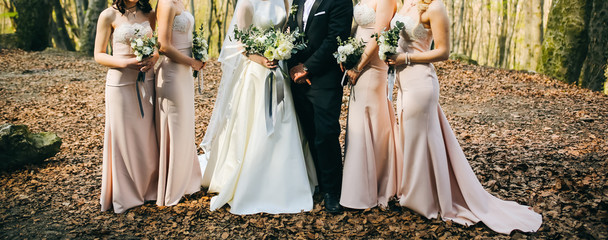 Bridesmaids in powder pink pastel dresses are standing near the bride and groom outdoors. Beautiful girls and wedding couple. Elegant friends photo details with bouquets. Autumn fall day with leaves.