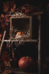 Thanksgiving moody still life - Variante 3