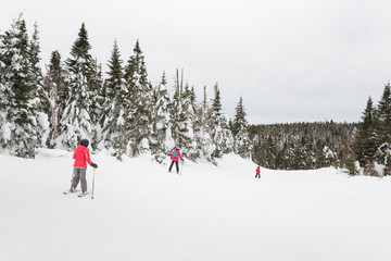 Family skiing together after fresh snowfall