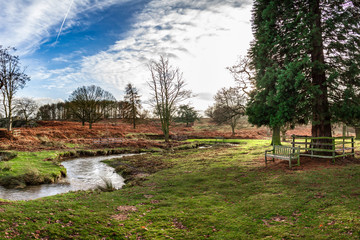 Photo of an English autumn park with a winding river and a wooden bench