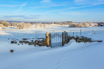 Snow covered old gate in a beautiful winter landscape