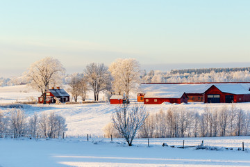 Farm in the countryside in a winter landscape