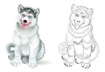 Fantasy illustration of cute sitting husky dog. Colorful and black and white page for coloring book. Worksheet for children and adults. Vector cartoon image.