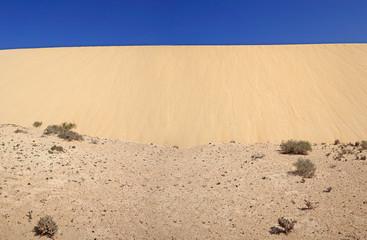 Mur de sable dune en progression dans le désert de l'ile de Fuerteventura aux Canaries