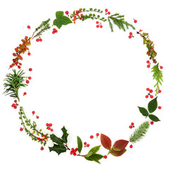 Winter and Christmas minimalist wreath garland with natural flora of leaf sprigs, holly berries and plants om white background. Traditional christmas greeting card for the festive season.