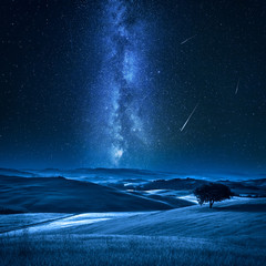 Fototapete - Tree on field with milky way and falling stars