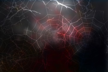 Dark halloween background with spiderweb