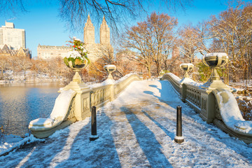 Central Park. New York. USA in winter covered with snow. Bow bridge.