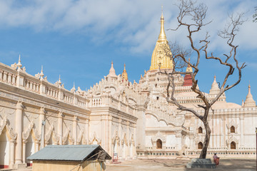 Ananda Paya, one of the most important pagoda of Bagan area