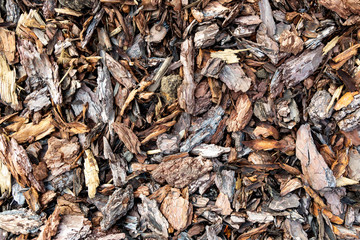 Wood chips or sawdust texture background, background pattern