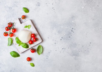 Fresh Mozzarella cheese on vintage chopping board with tomatoes and basil leaf on stone kitchen table background. Space for text