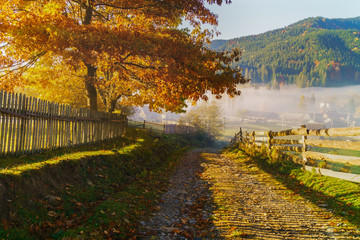 Beautiful morning panorama of village road covered by low clouds. Autumn fog on the mountain hills. Misty fall woodland. Colored sunrise in forested mountain slope..