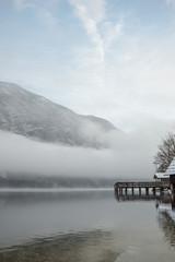 Mystical winter nature