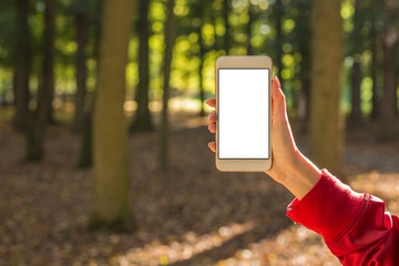Woman holding smartphone with blank screen in the autumn forest
