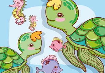 aquatic marine life
