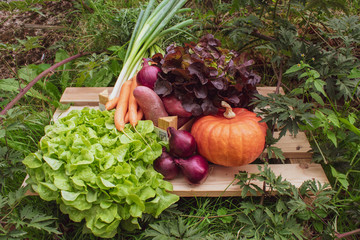 verschiedene Sorten Gemüse auf einer Holzpalette im freien.