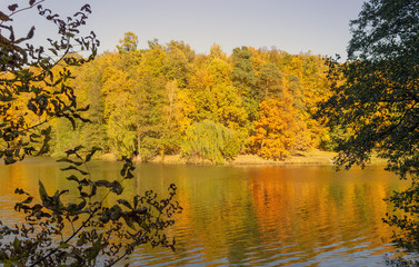 Landscape from the autumn forest and pond