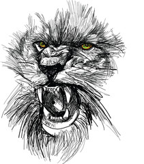 Photo sur Aluminium Croquis dessinés à la main des animaux Sketch of lion head