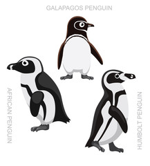 Bird African Penguin Set Cartoon Vector Illustration
