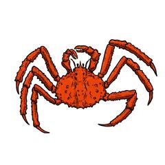 Illustration of King Crab isolated on white background. Design element for logo, label, emblem, sign, poster, menu, t shirt.