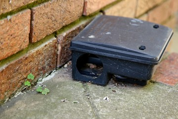 A black plastic rat trap (baiting box). Pest control concept image.