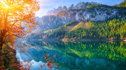 Photo sur Plexiglas Lac / Etang autumn scenery with Dachstein mountain summit reflecting in crystal clear Gosausee mountain lake