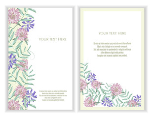 Vector banners set with Luxurious summer wild flowers.Template for greeting cards, wedding decorations, invitation ,sales. Spring or summer design. Place for text.