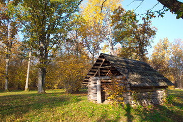 Historic old house in the woods