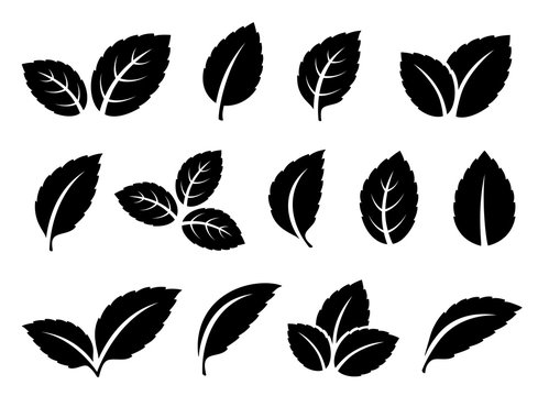 black mint leaves set icons on white