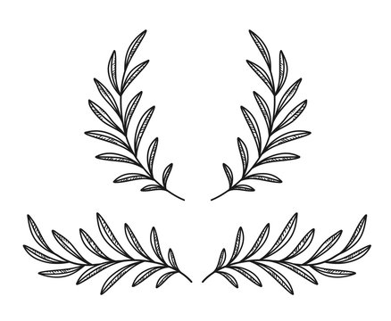 hand drawn olive branches and wreath on white