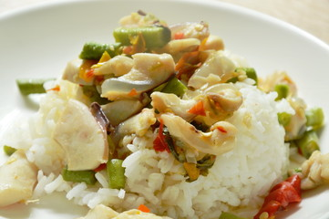 spicy stir fried squid with basil leaf and plain rice on plate