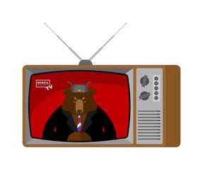 Russia tv. Russian news broadcasting journalist. Bear anchorman in tv studio. Live broadcasting