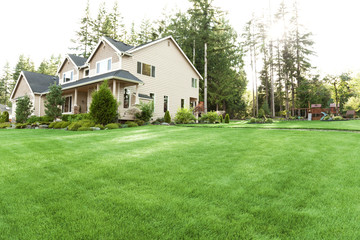 house with lawn and garden Wall mural