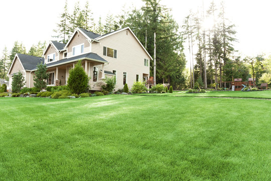 house with lawn and garden