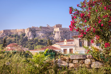Ancient Greek ruins with flowers overlooking the Acropolis, Athens, Greece