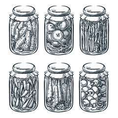 Pickled vegetables, mushrooms in glass jar, vector sketch illustration. Home made preserves hand drawn design elements