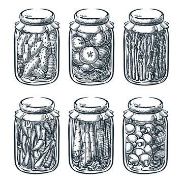 Pickled vegetables, mushrooms in glass jar, vector sketch illustration. Home made preserves hand drawn design elements