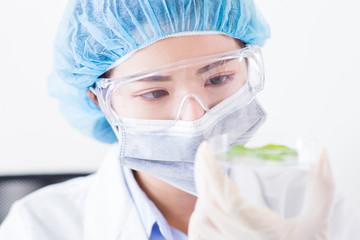 woman scientist take petri dish