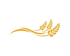 Vector Growing Plant Agriculture wheat Grain Sign Symbol Icon Logo Template Design Inspiration