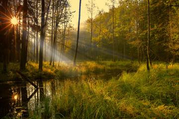jesień na Mazurach
