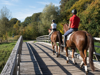 Ausritt zu zweit - Pferde - Holzbrücke