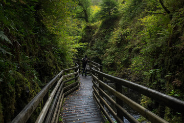 Waterfall Trail Glenariff Forest Park, Northern Ireland.