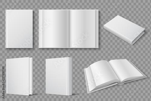 Book Mockup Vector